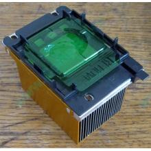 Радиатор HP p/n 279680-001 (socket 603/604) - Красногорск