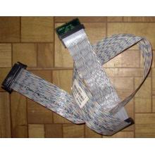 Кабель IBM 32P0578 68-pin SCSI Cable XSERIES (FRU 49P3231) - Красногорск
